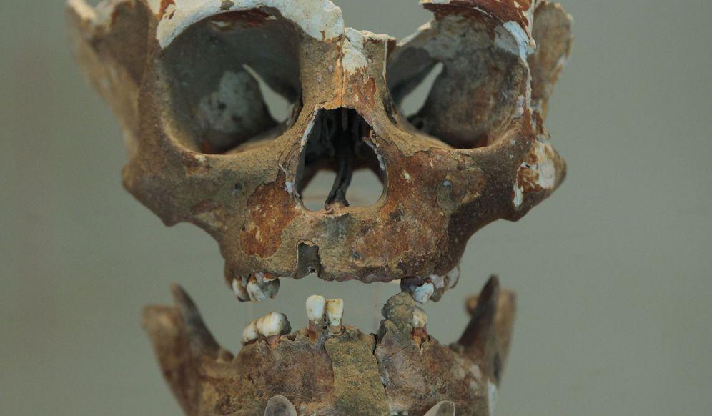 Foto: Un cráneo maya que fue utilizado como trofeo bélico por guerreros enemigos. (EFE)