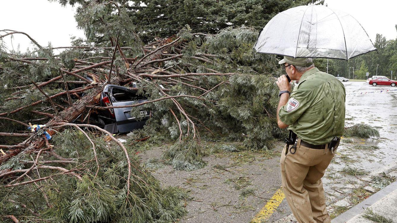 Dos heridos graves al caer un árbol en la Universidad de Navarra por el fuerte viento