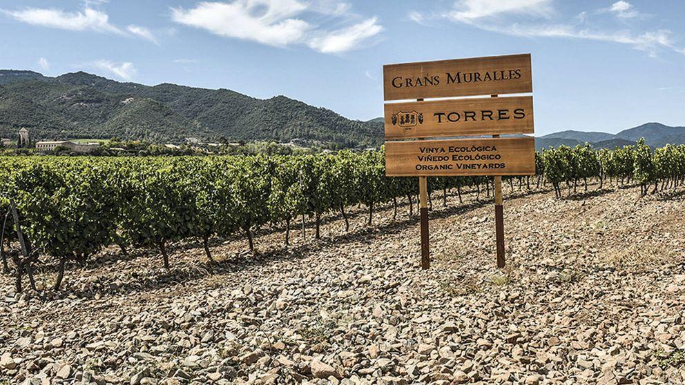 Antología del buen vino