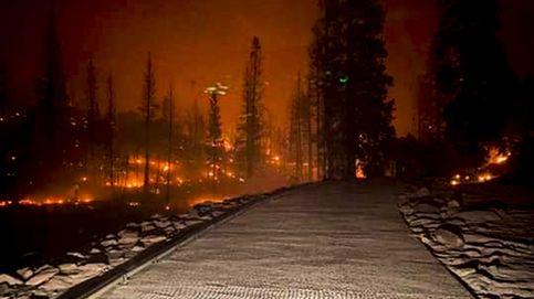Más de 200 personas rescatadas tras quedar atrapadas por un incendio en California