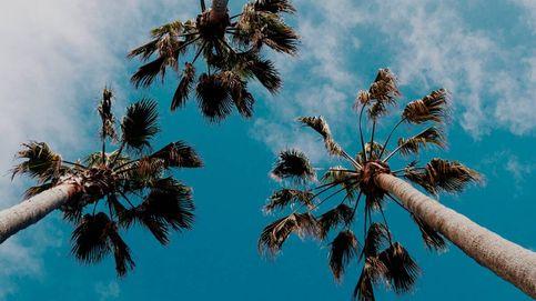 De Canarias a Baleares: 12 destinos de playa para viajar este verano