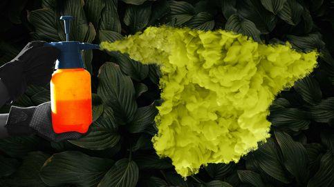 La industria presiona para que la UE no prohíba el pesticida más usado en España
