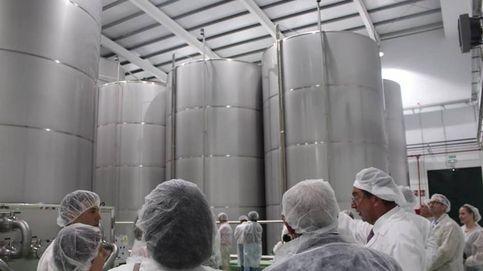 El gigante Glencore compra una planta en Jae´n y entra en el sector aceitero andaluz