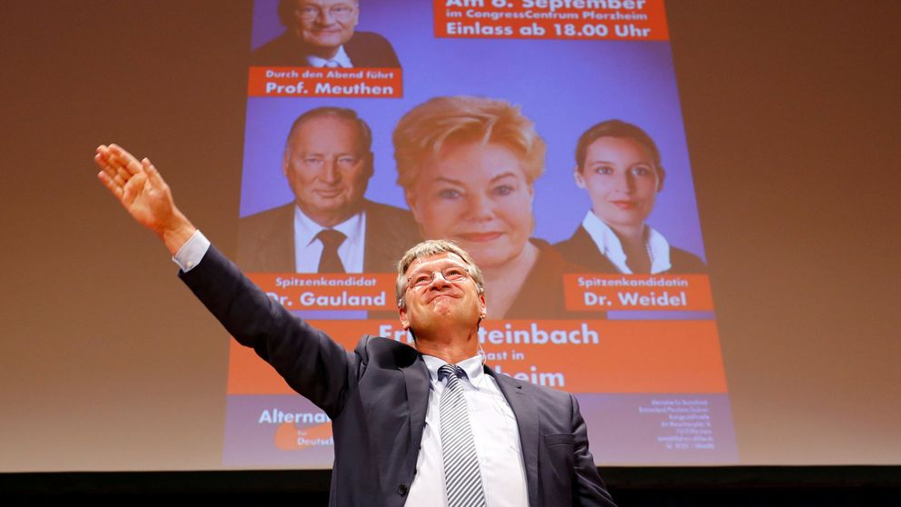 ¿Quién vota a Alternativa para Alemania?