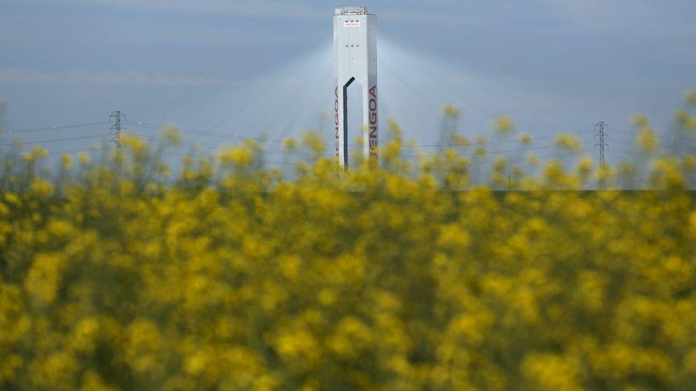 Foto: Una torre en una planta solar de Abengoa en Sevilla (España). (Reuters)