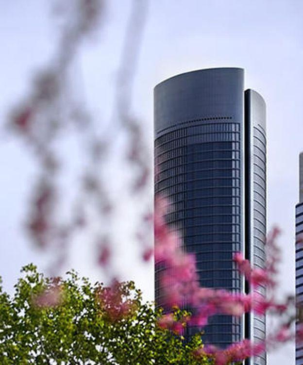Foto: La Torre PwC es la joya de la corona de Testa.