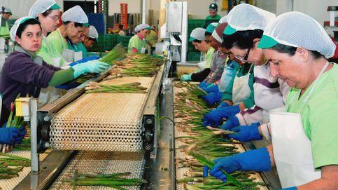 El Gobierno asume que el frenazo llega al empleo: se crearán 150.000 puestos menos