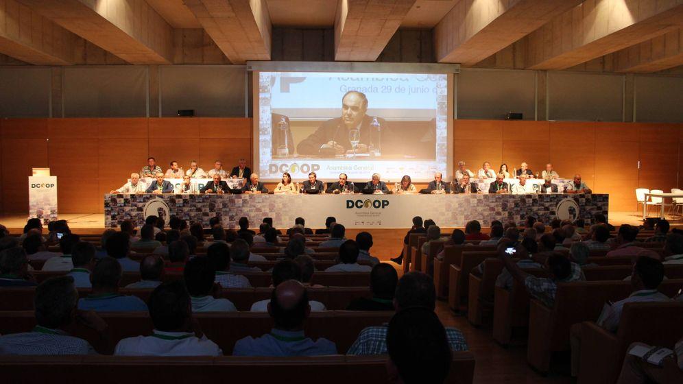 Foto: Asamblea anual de Dcoop en Antequera. (Dcoop)