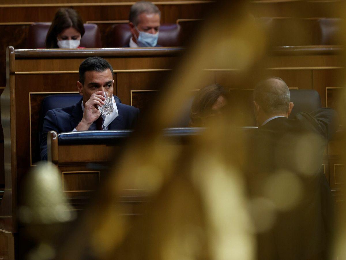 Foto: Pedro Sánchez en el Congreso. (EFE)
