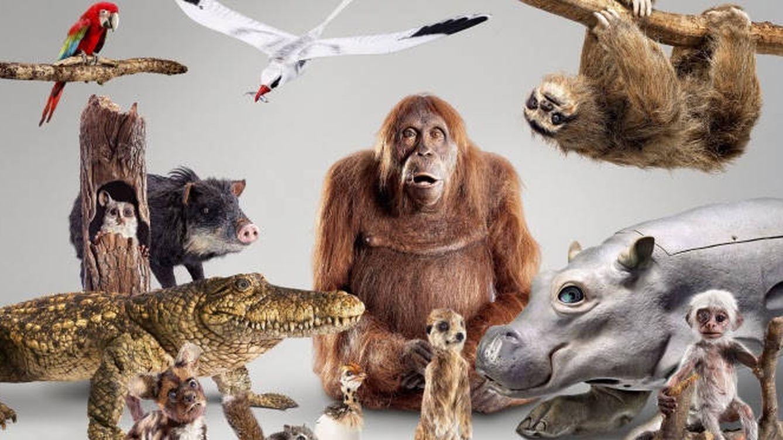 'Espiando en la manada': los animatronics llegan a #0 en esta gran producción