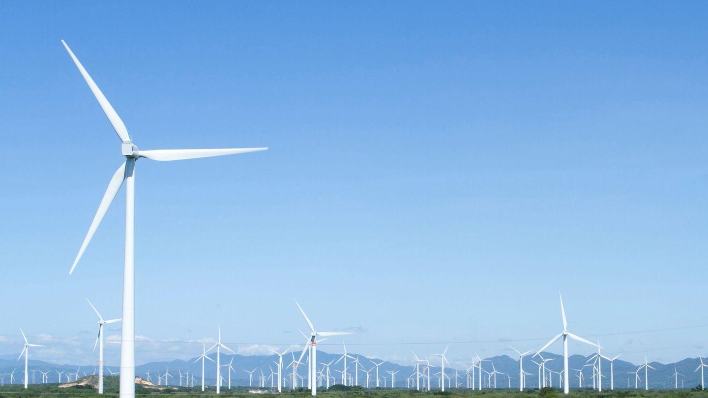 ¿Cuál es el impacto de las eólicas en el empleo? Según el representante de Teruel Existe, es residual. (EFE)