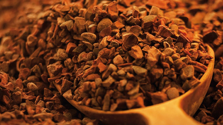 Foto: Semillas del cacao, punto de partida para la elaboración del chocolate. De su calidad depende la personalidad del resultado final. / JUAN SERRANO CORBELLA