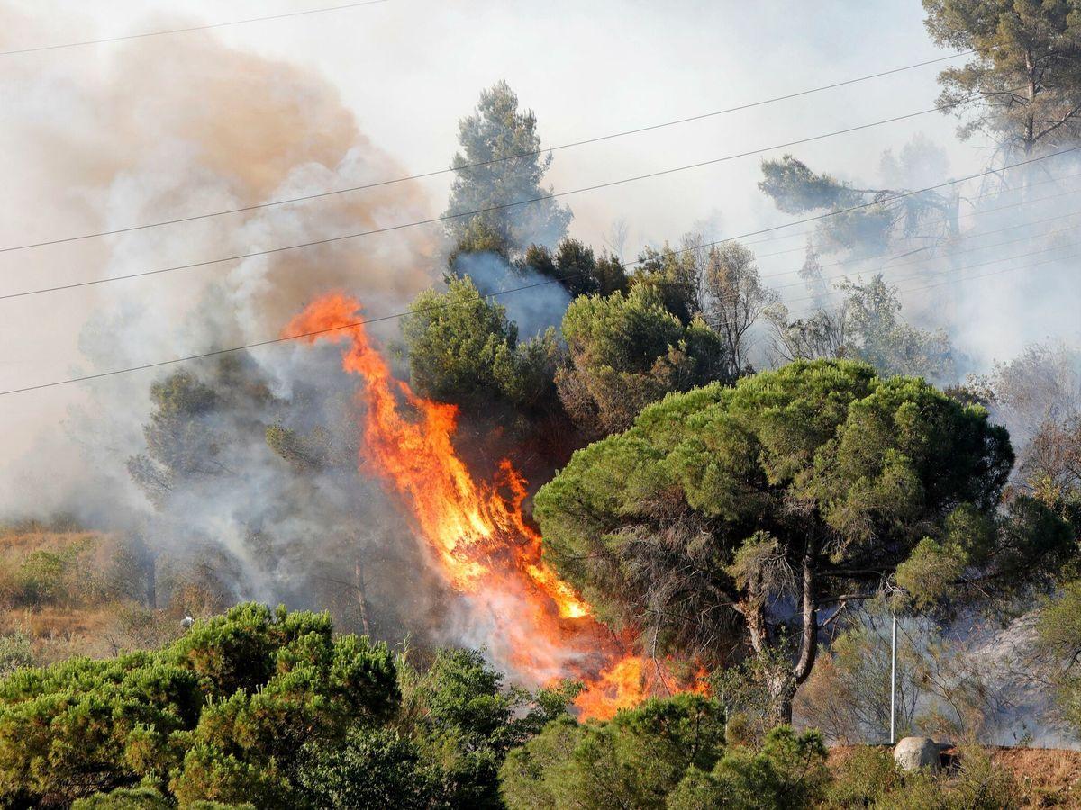 Foto: Incendio en Castellvi de Rosanes. (EFE)