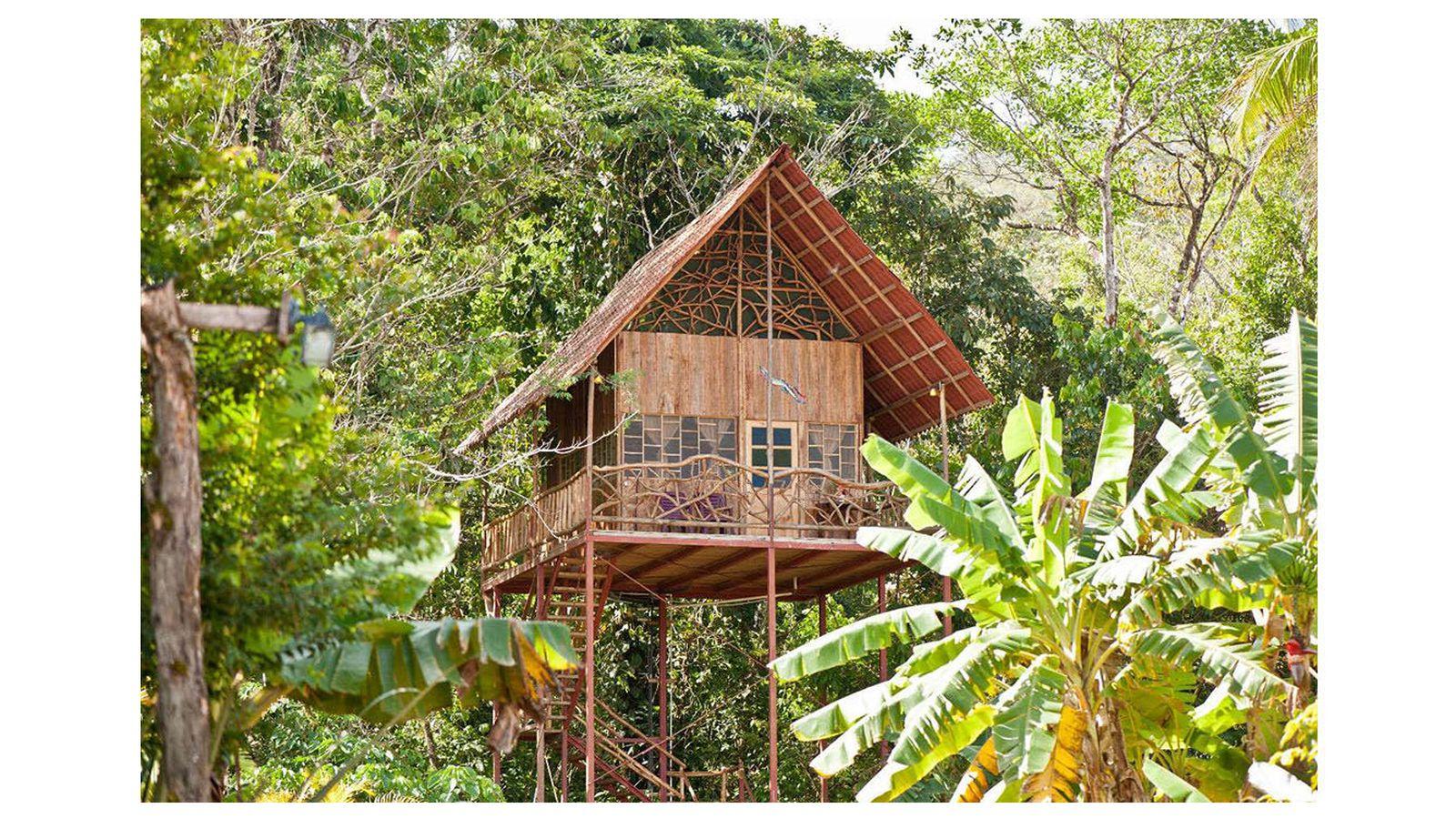 Vivienda una casa ecofriendly en el bosque el - Alojamientos en el bosque ...