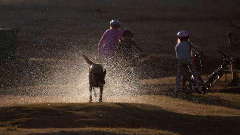 Los parques de Sudáfrica comienzan a abrir
