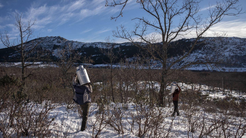 Los ganaderos recorren 2,4km diarios sobre nieve para sacar la leche. (Greenpeace/Pedro Armestre)