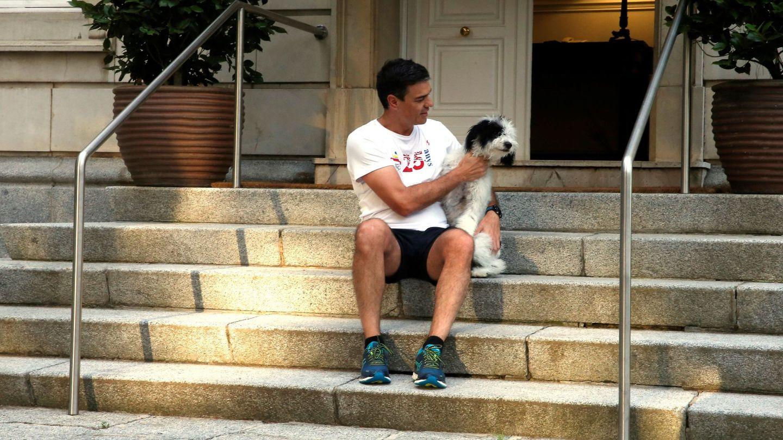 Pedro Sánchez, haciendo mimos a su perra Turca, en la escalinata de La Moncloa, este lunes. (EFE)