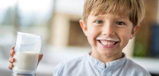 Post de La leche es mala para los resfriados: los científicos lo demuestran
