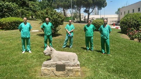 Respiradores veinte veces más baratos: la idea española para frenar el covid en Latam
