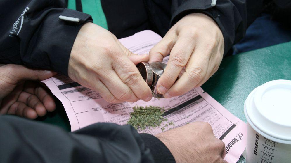 Foto: El uso recreativo de la marihuana es ilegal en el estado australiano de Victoria (EFE/Osvaldo Ponce)