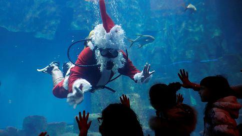 Un Papá Noel acuático y la fiesta navideña de la espuma en Singapur: el día en fotos