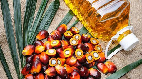 Los nombres con los que se ha camuflado el aceite de palma
