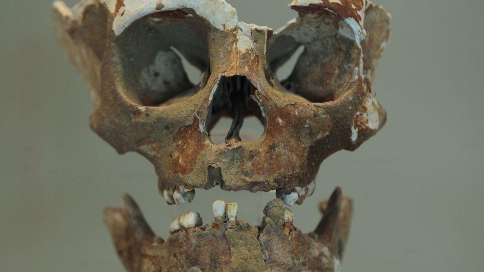 Una nueva teoría de por qué colapsó la civilización maya: por una guerra civil