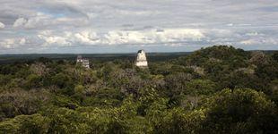 Post de El gran incendio blanco: la cocaína destruye las junglas centroamericanas
