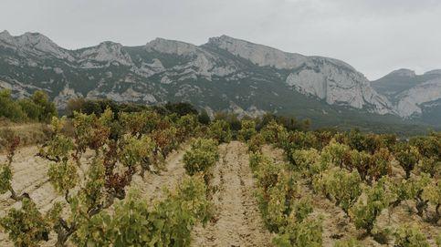 El asombroso 'efecto Foehn' y los nuevos 'viñedos singulares' alaveses de la DO Rioja