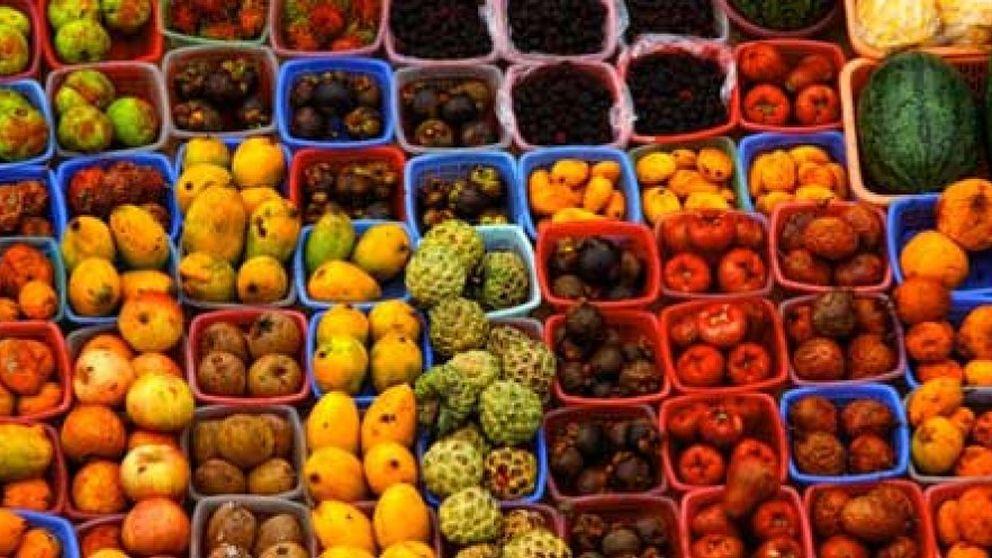 La salmonela puede provocar intoxicación también a través de fruta y verdura