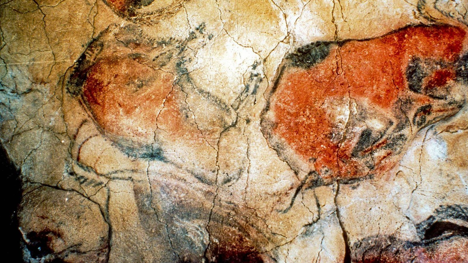 Foto: Fotografía de archivo tomada hace 14 años de las pinturas rupestres en las cuevas de Altamira (Efe)