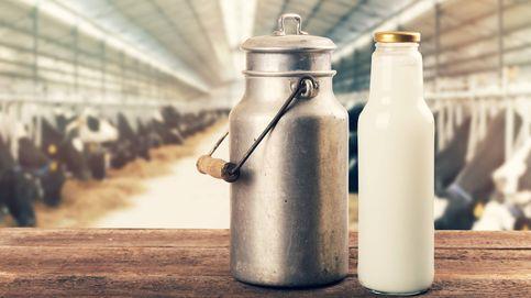 Alimentos 'antiprogreso', una moda con riesgos