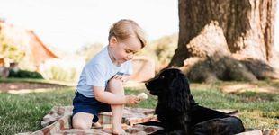 Post de Los perros de la realeza: conoce a los fieles compañeros de Meghan, Máxima o Sofía