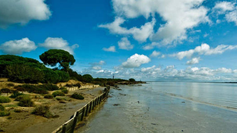 Así es Doñana. (Foto: Sanlúcar Turismo)