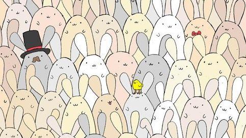 ¿Eres capaz de encontrar el huevo de Pascua entre tantos conejos?