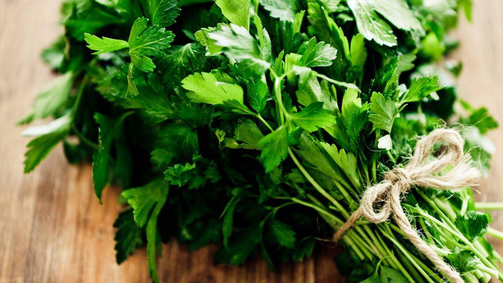 Foto: Esta hierba está repleta de vitaminas. (iStock)
