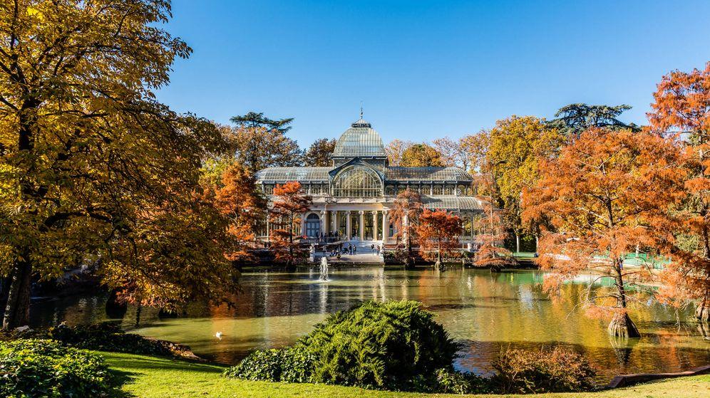 Foto: Palacio de Cristal del Retiro. (iStock)