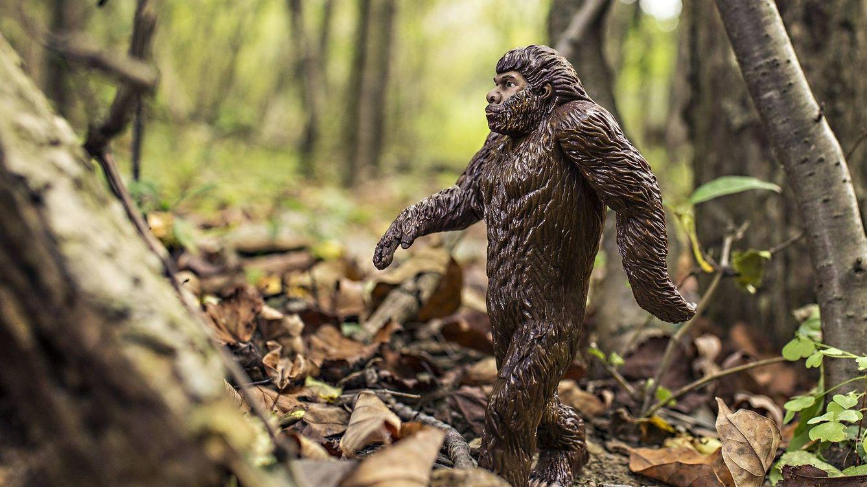 La última tecnología al servicio de la búsqueda del 'Bigfoot' en Oregon (EEUU)