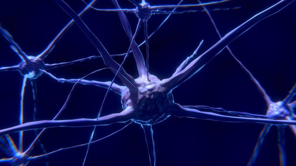 Científicos españoles descubren cómo frenar el cáncer cerebral que más muertes causa