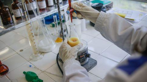 Fundación Mutua Madrileña financia 27 proyectos de investigación médica