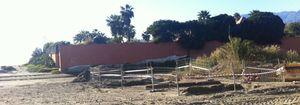 Foto: Bronca a pie de playa entre Antonio Banderas y la alcaldesa de Marbella por el derribo de La Gaviota
