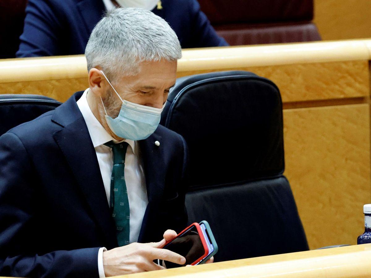 Foto: El ministro del Interior, Fernando Grande-Marlaska, en el Senado. (EFE)