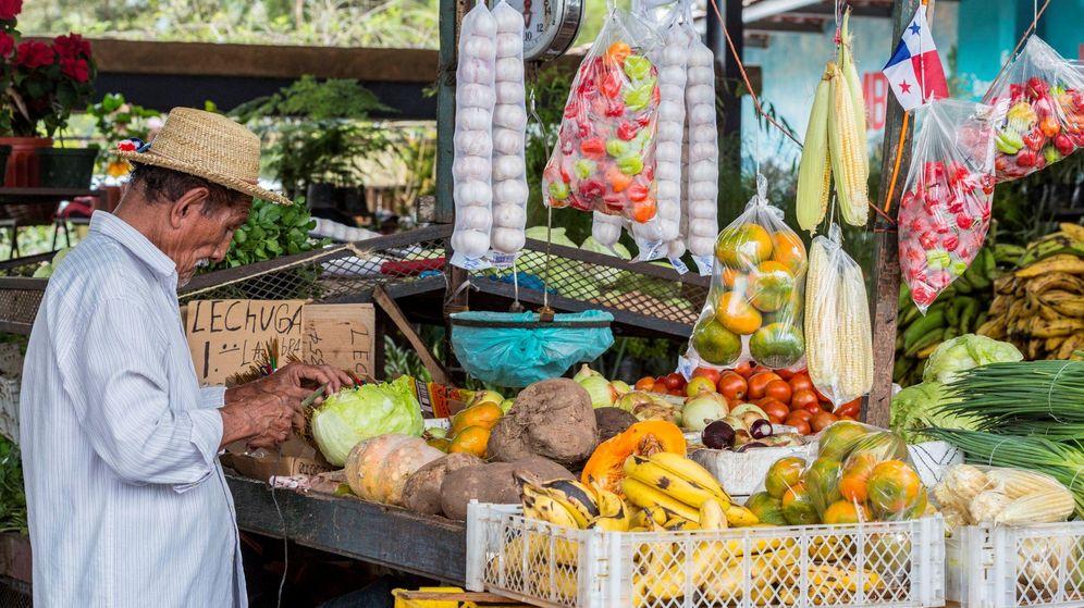 Un viaje gastronómico por Ciudad de Panamá . Noticias de Gastronomía