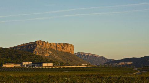 Juan Gil 4 Meses, tinto joven estandarte del potencial de los vinos de Jumilla