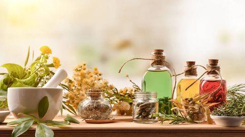 ¿Conoces el extracto de neem? Cinco beneficios