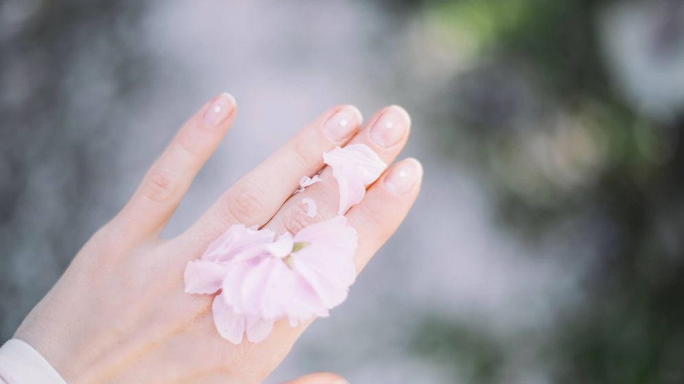 Foto: Dales más vida a tus manos. (Roman Kraft para Unsplash)