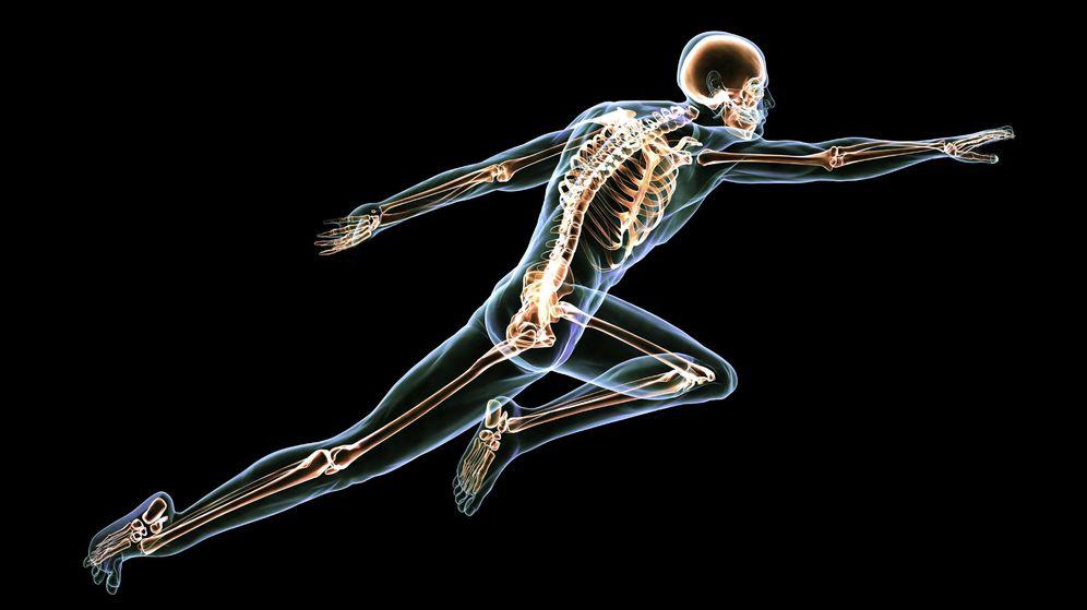 Foto: Nos olvidamos de ellos porque no se ven, pero los huesos son parte fundamental de nuestro organismo. (iStock)