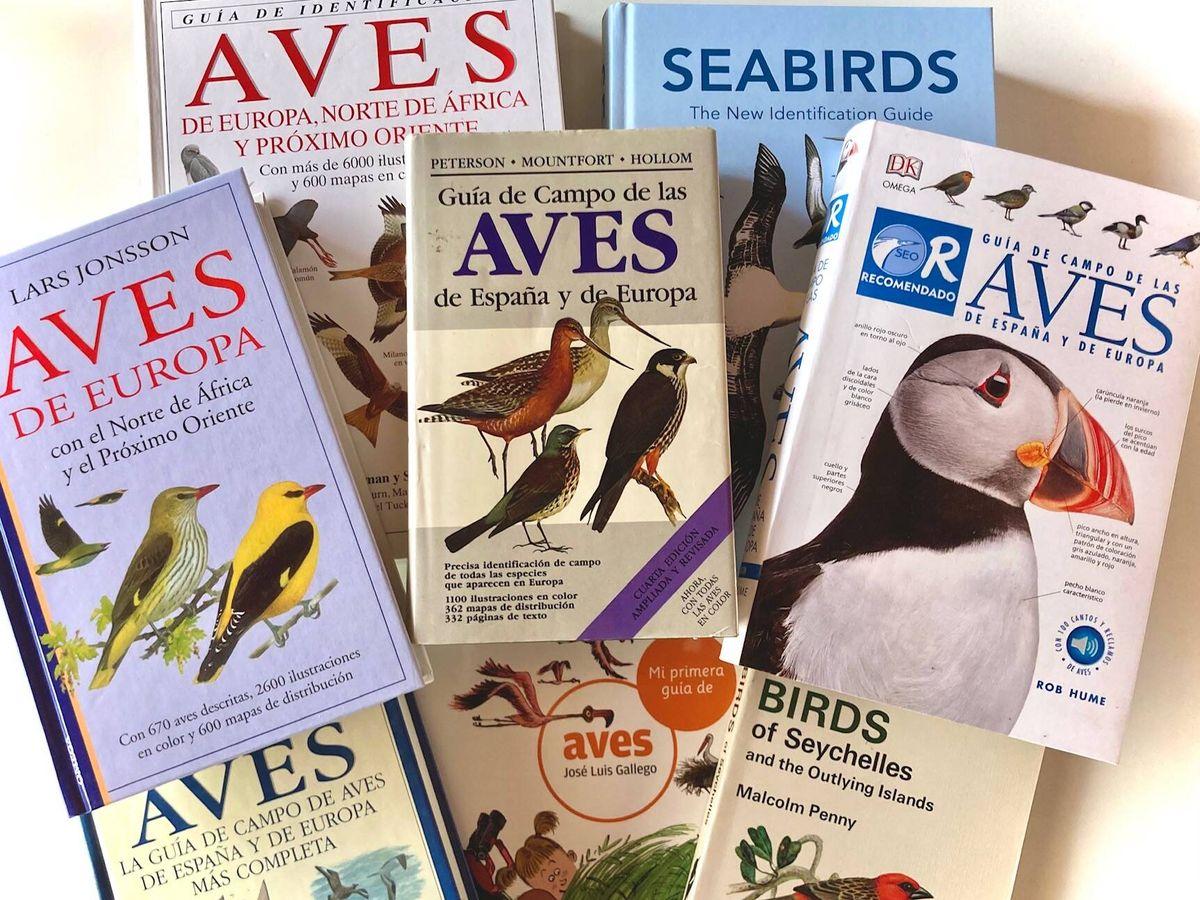 Foto: Guías de aves: obras aladas (Jose Luis Gallego)