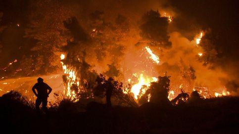 España vacía los montes para combatir el alto riesgo de incendio por la ola de calor