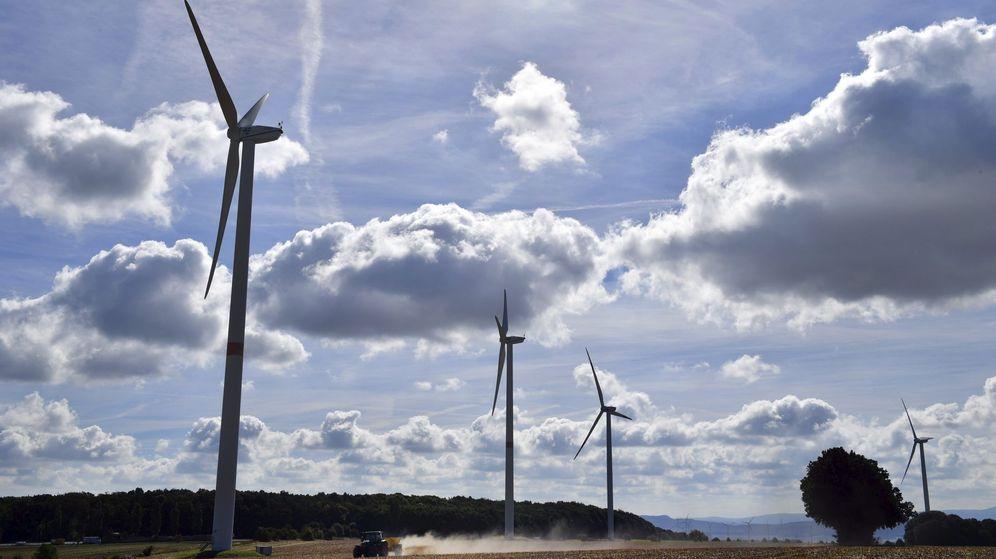 Foto: Molinos de viento. (EFE)